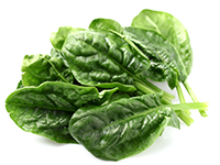Spinach is a high iron food.