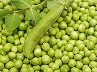 Green peas are a lower calorie filler food.