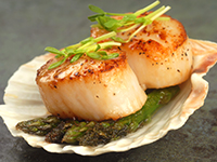 Scallops are a lower calorie filler food.