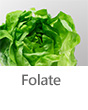 Top Foods- Folate