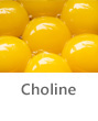Top Foods- Choline