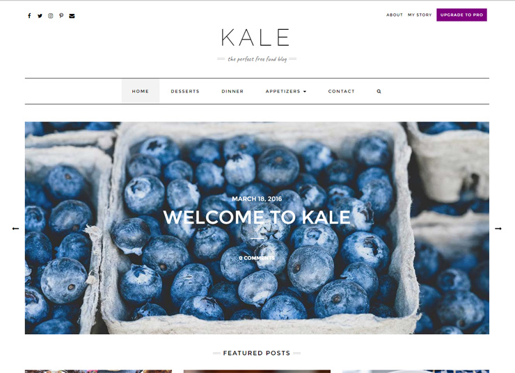 Kale - Best Food or Personal Blog Theme