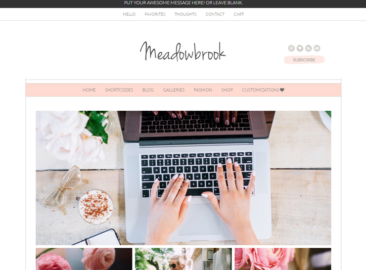 The Meadowbrook Boutique