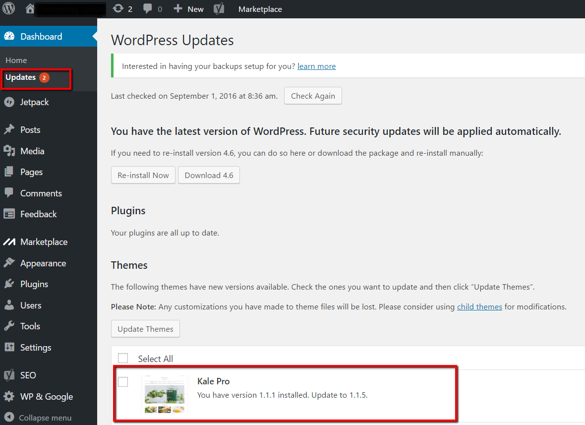 Updating Your Premium WordPress Theme via Control Panel or FTP