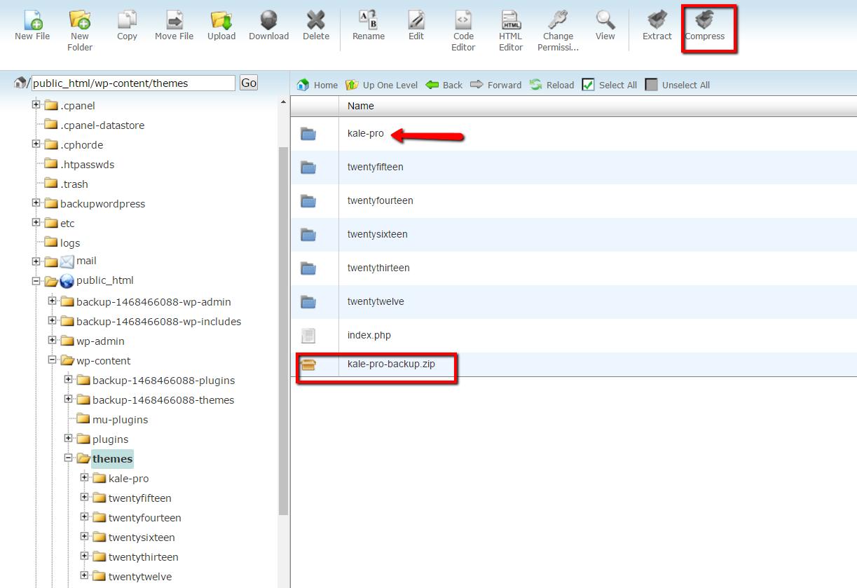 Updating Your Premium WordPress Theme via Control Panel or FTP