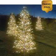 Pakke 2: 3 trær (2x H:150 + 1x H:180)