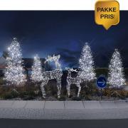Pakke 8: 4 trær + 2 reinsdyr