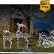 Pakke 9: 2 reinsdyr + 1 slede