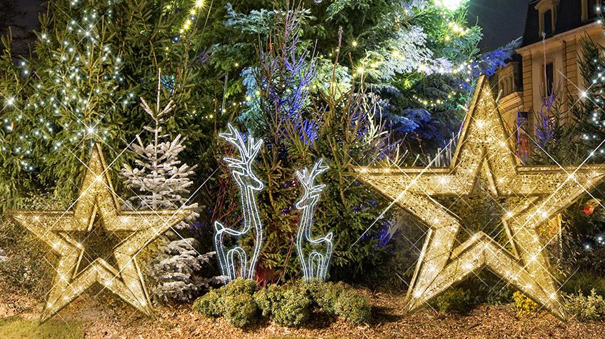 Juletrær julestjerner og reinsdyr