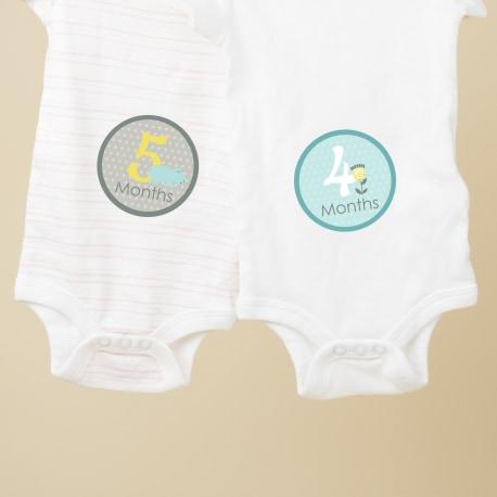 Baby Milestone Stickers
