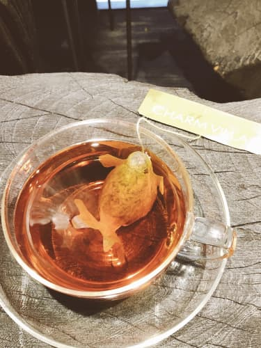 台北・子村荘園の金魚ティーパック