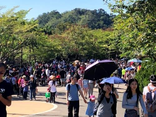台北の真夏の人たち