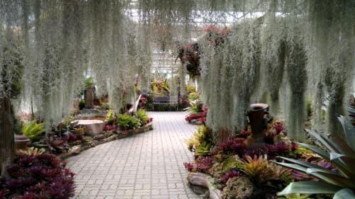 シリキット植物園