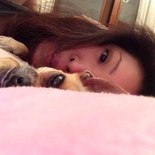 日本人と犬