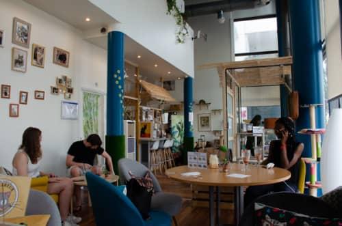 パリの猫カフェ・ムスタッシュカフェ店内
