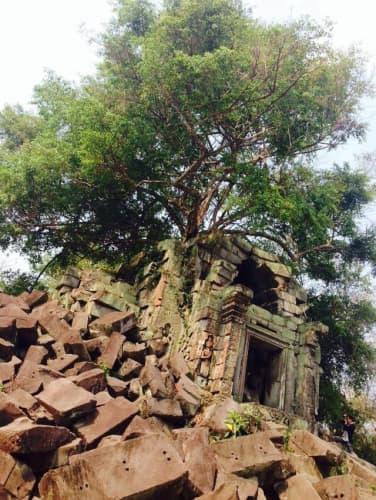 カンボジア・シェムリアップのベンメリア遺跡