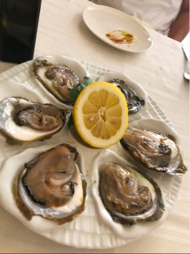 クロアチア・ドゥブロヴニク レストラン Proto 生牡蠣