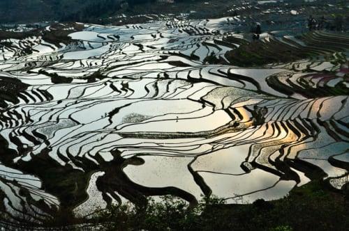 世界の絶景 元陽の棚田(中国)
