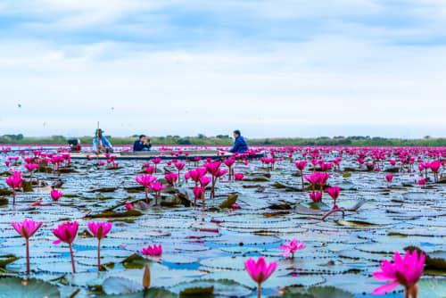 世界の絶景 タレーブアデーン(タイ)