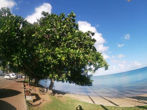 ニューカレドニアの風景