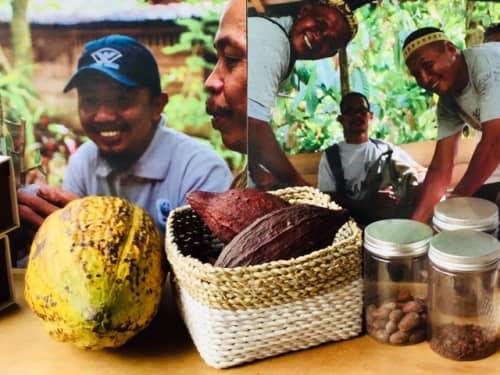 バリ島土産 ジャワ産チョコレート MONGGO