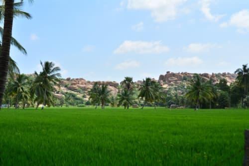 ハンピの田園風景