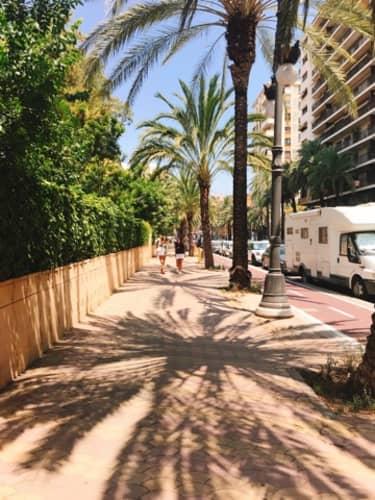 バレンシアの道