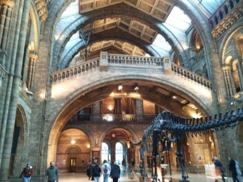 自然史博物館ホール