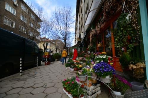 ブルガリアの花屋