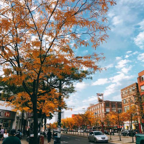チャイナタウンの秋