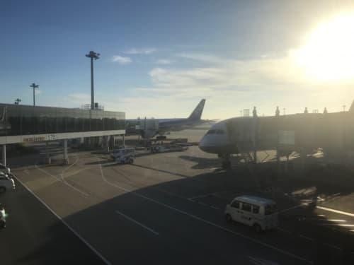 成田空港のANA機
