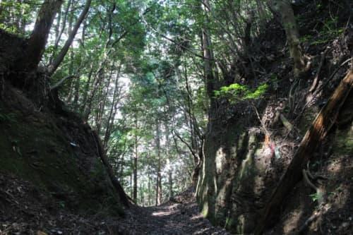 大寶寺道 峠