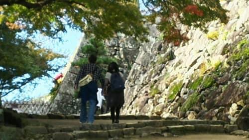 彦根城の階段