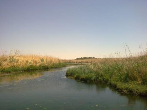 アズラク湿地帯