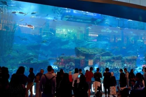ドバイモール内の水族館