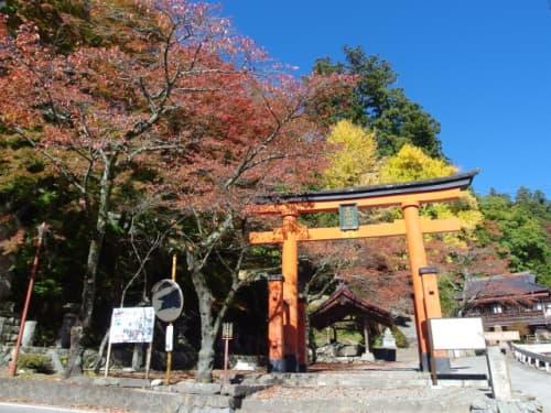 金櫻神社 鳥居