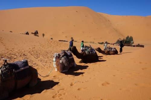 モロッコ メズルーガ