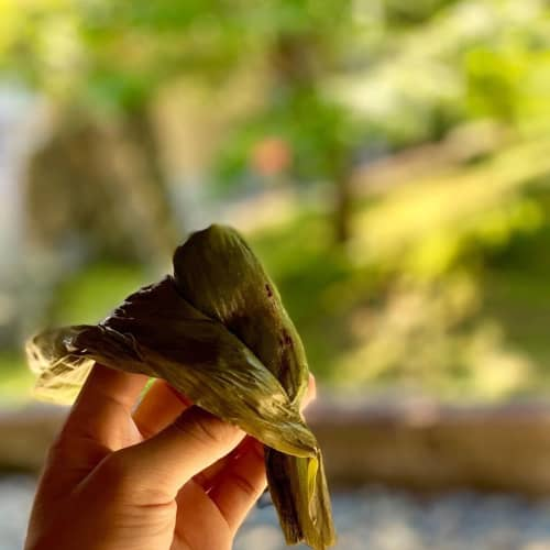 江口だんごの笹団子