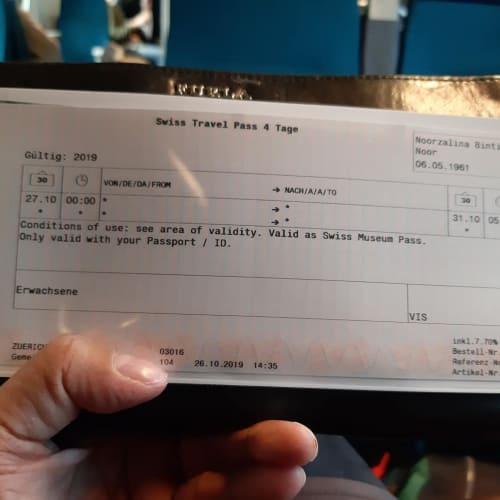 スイストラベルパスのチケット