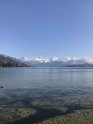 Thunの湖