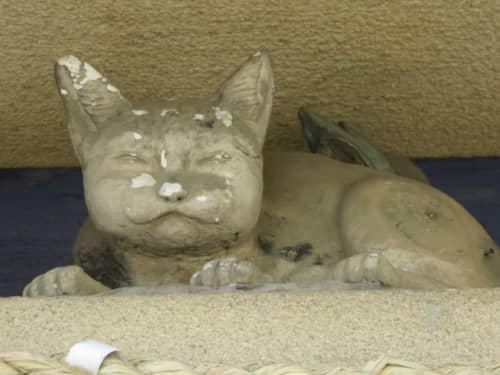 元城町東照宮手水舎の猫