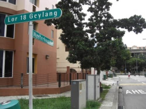 ゲイランのロロン18とWesterhoutの角