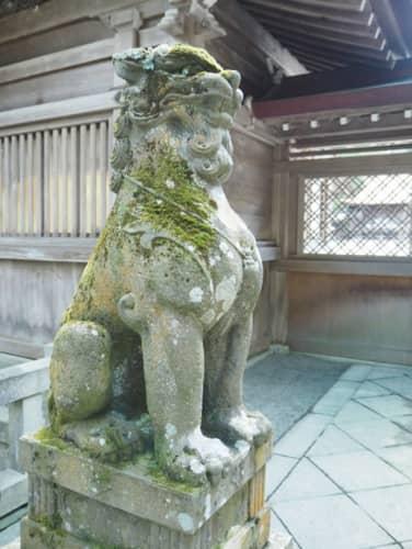 弥彦神社の狛犬