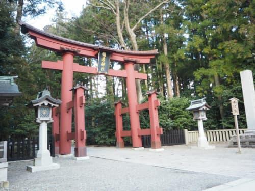 弥彦神社の鳥居