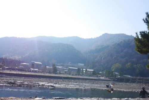 少し川沿いを下ったところから見る嵐山