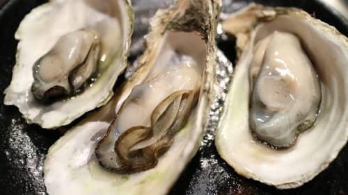 おいしそうな牡蠣