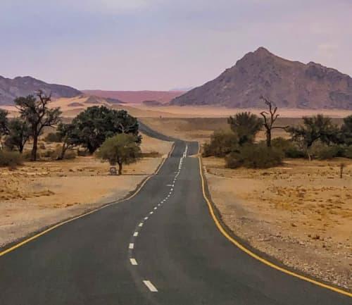 ナミビア塗装された道路