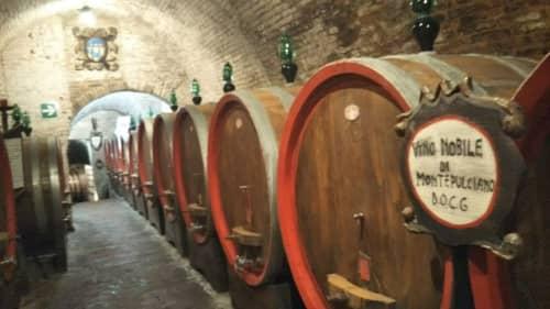 モンテプルチアーノのワインセラー