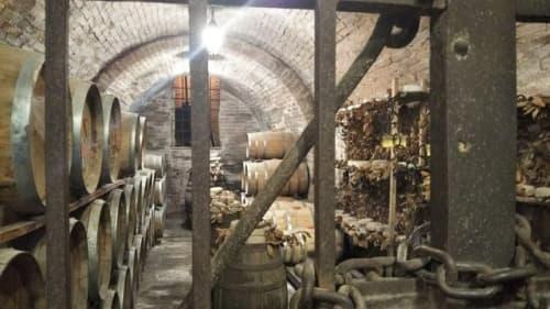 モンテプルチアーノのワイナリー