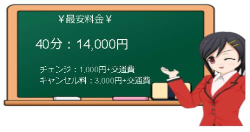 【ベビードール】の料金表